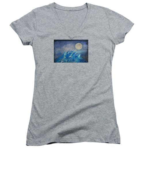Dolphin Dreams Women's V-Neck T-Shirt