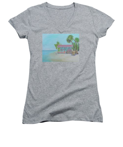 Dolphin Dreams Women's V-Neck (Athletic Fit)