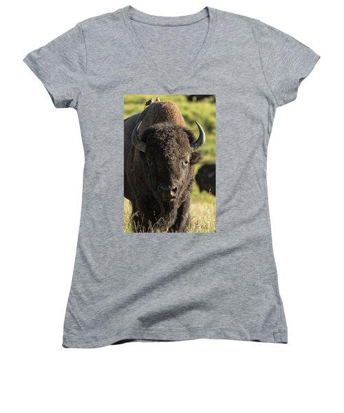 Domance Women's V-Neck T-Shirt