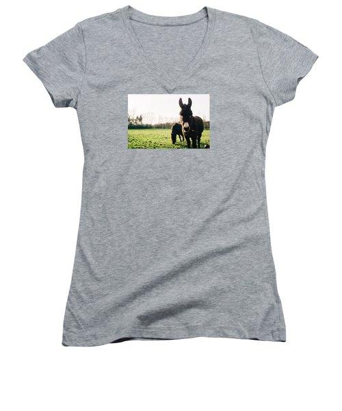 Donkey And Pony Women's V-Neck T-Shirt (Junior Cut) by Pati Photography