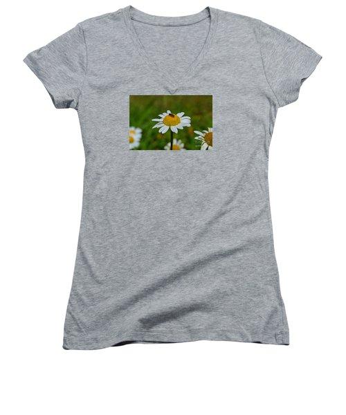 Don't Bug Me Women's V-Neck T-Shirt (Junior Cut) by Lew Davis