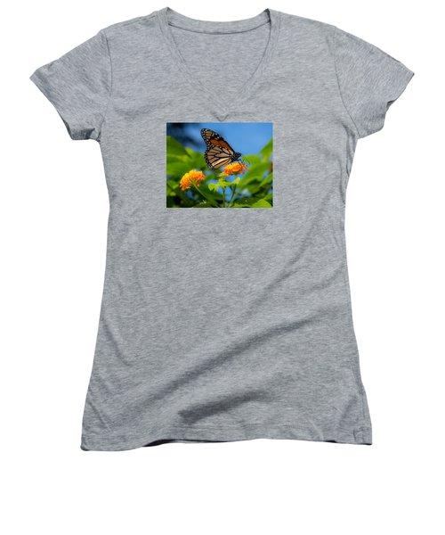 Dote Women's V-Neck T-Shirt