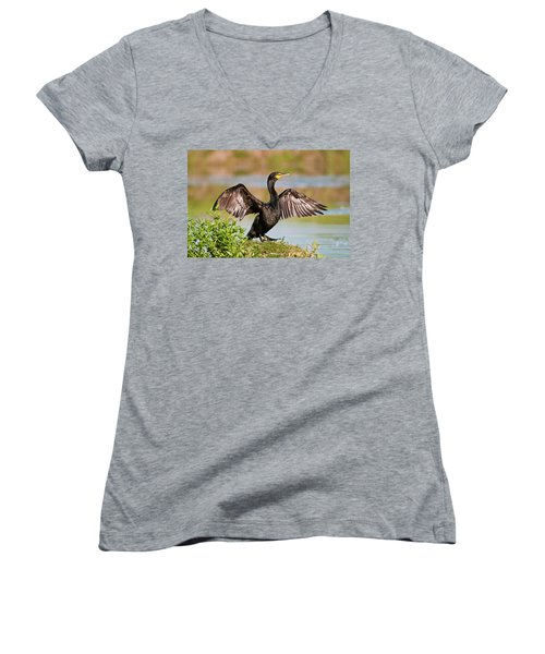 Double-crested Cormorant Women's V-Neck T-Shirt (Junior Cut) by Gary Lengyel