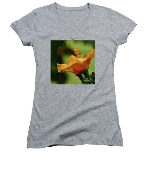 Double Grace Women's V-Neck T-Shirt (Junior Cut)