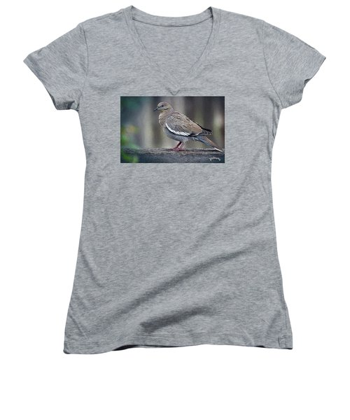 Dove Women's V-Neck