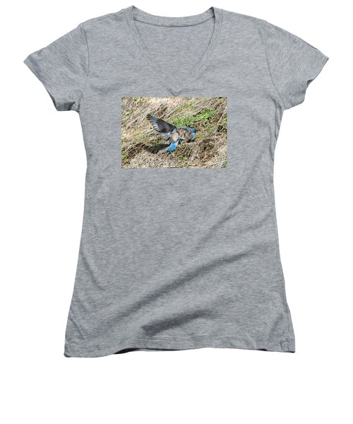 Women's V-Neck T-Shirt (Junior Cut) featuring the photograph Down For The Count by Mike Dawson