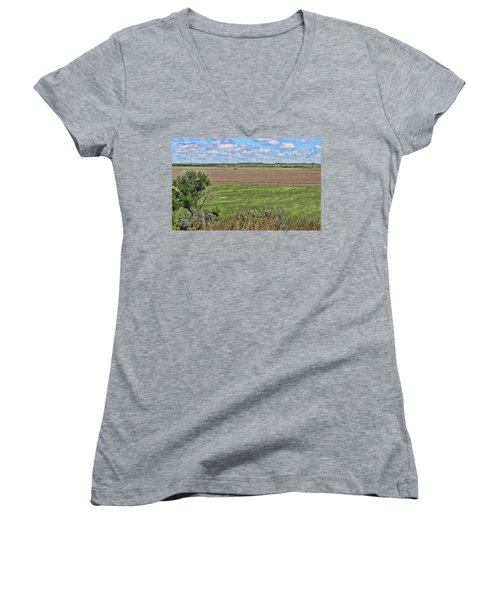 Down In The Valley Women's V-Neck T-Shirt (Junior Cut) by Sylvia Thornton