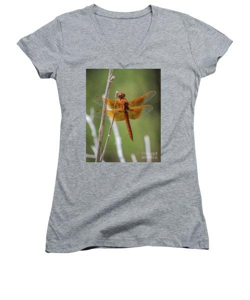 Dragonfly 10 Women's V-Neck