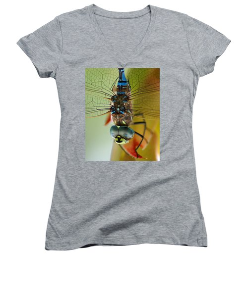 Dragonfly In Thought Women's V-Neck