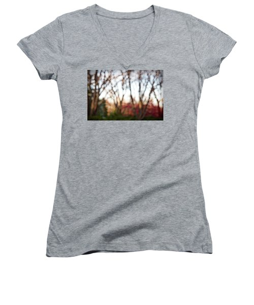 Women's V-Neck T-Shirt (Junior Cut) featuring the photograph Dreamy Fall Colors by Susan Stone
