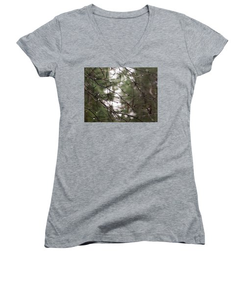Droplets On Branches Women's V-Neck