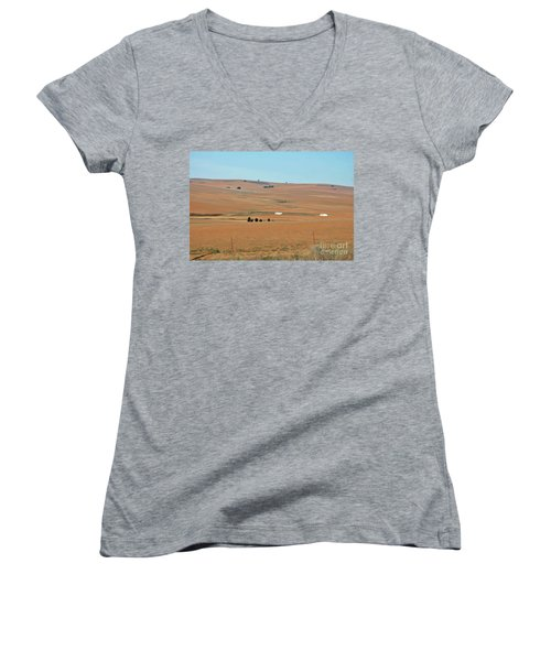 Drought-stricken South African Farmlands - 1 Of 3  Women's V-Neck (Athletic Fit)