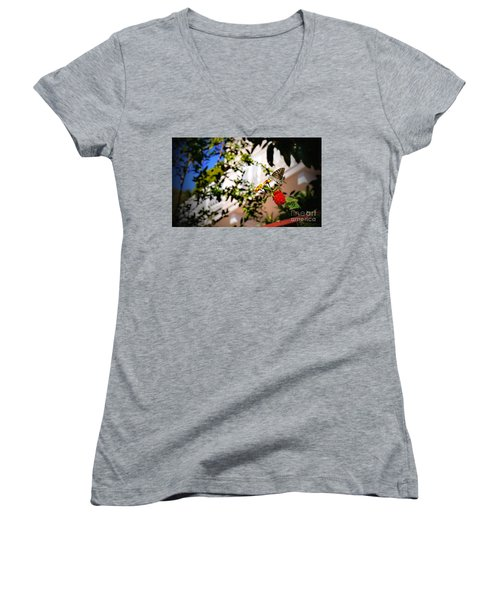 Dubrovniks Butterfly Women's V-Neck