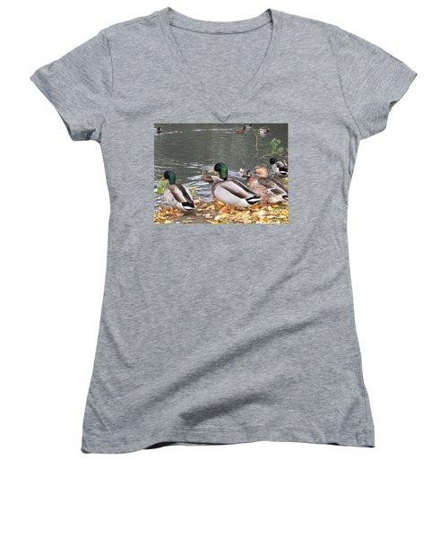 Ducks By The Pond Women's V-Neck T-Shirt