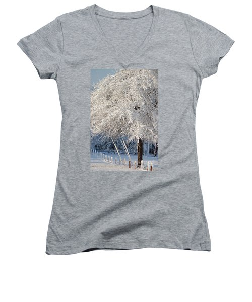 Dusted With Powdered Sugar Women's V-Neck T-Shirt (Junior Cut) by Donna Bentley