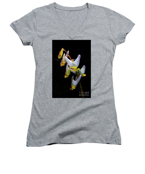 Dutchmans Breeches Women's V-Neck T-Shirt (Junior Cut) by Barbara Bowen