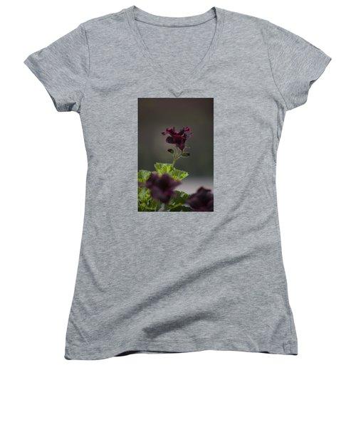 Dying Embers Women's V-Neck T-Shirt (Junior Cut) by Morris  McClung