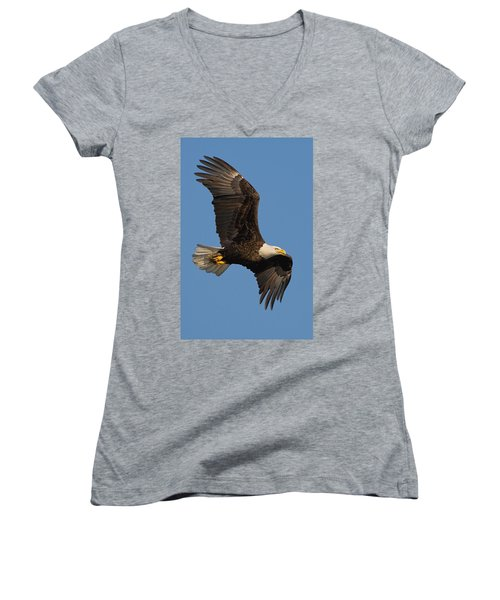 Eagle In Sunlight Women's V-Neck