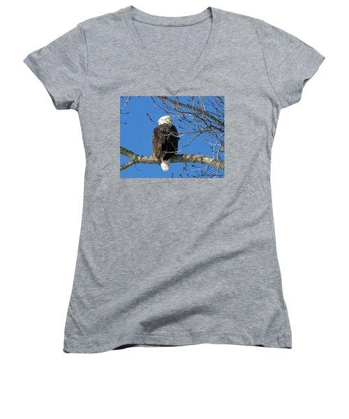 Eagle Watch Women's V-Neck T-Shirt (Junior Cut) by Sue Stefanowicz