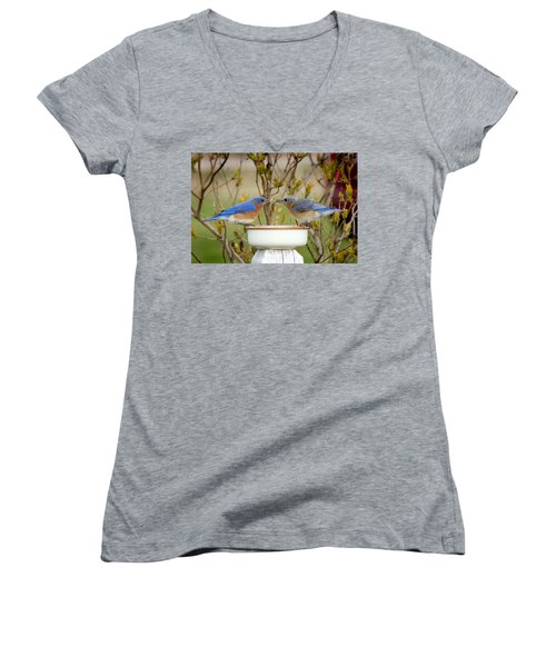 Early Bird Breakfast For Two Women's V-Neck T-Shirt (Junior Cut) by Bill Pevlor