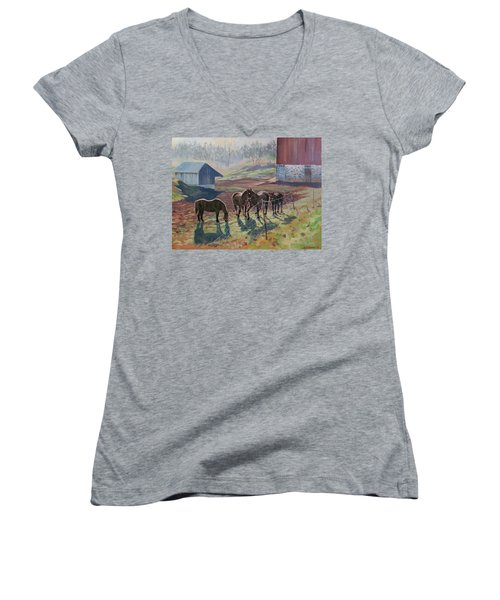 Early December At The Farm Women's V-Neck T-Shirt (Junior Cut) by David Gilmore
