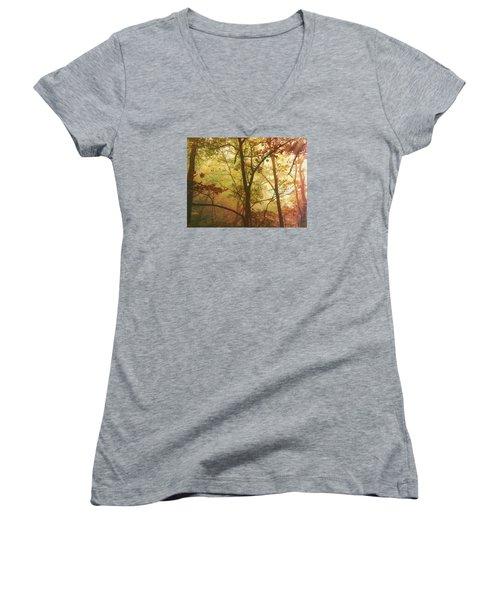 Early Morning Mist Women's V-Neck T-Shirt (Junior Cut) by Bellesouth Studio