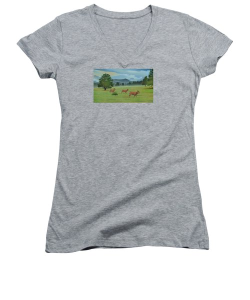 Early Spring Evergreen Women's V-Neck T-Shirt