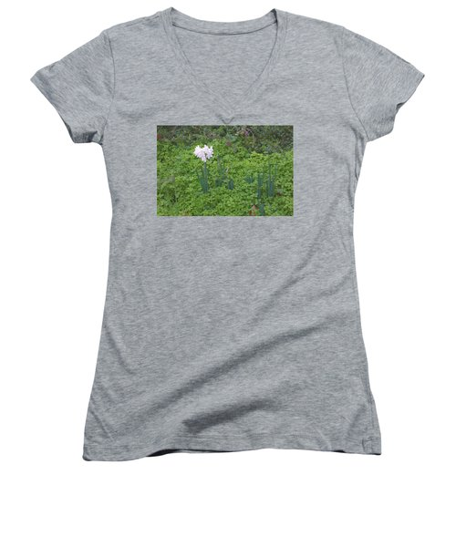 Early Spring Garden Flowers Women's V-Neck (Athletic Fit)