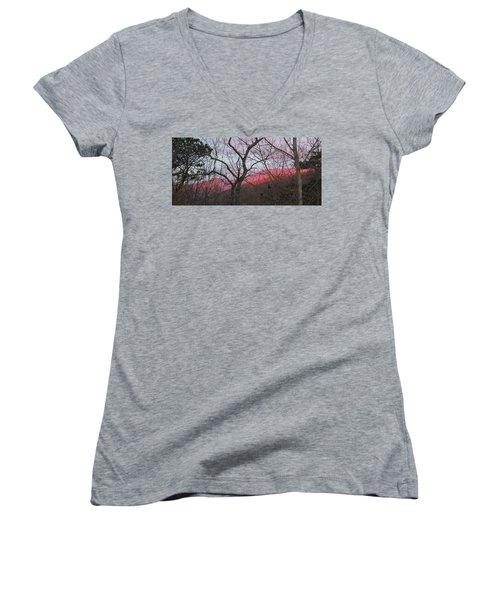 Early Spring Sunrise Women's V-Neck T-Shirt (Junior Cut) by Tammy Schneider