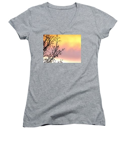 Early Spring Sunset Women's V-Neck T-Shirt (Junior Cut) by Will Borden
