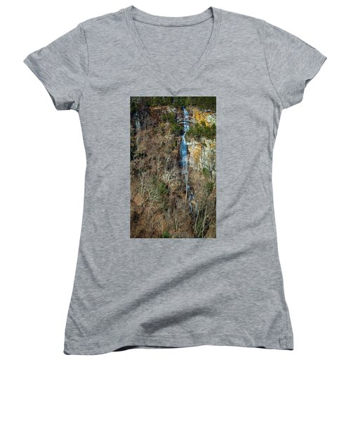 Early  Spring Waterfall  Women's V-Neck