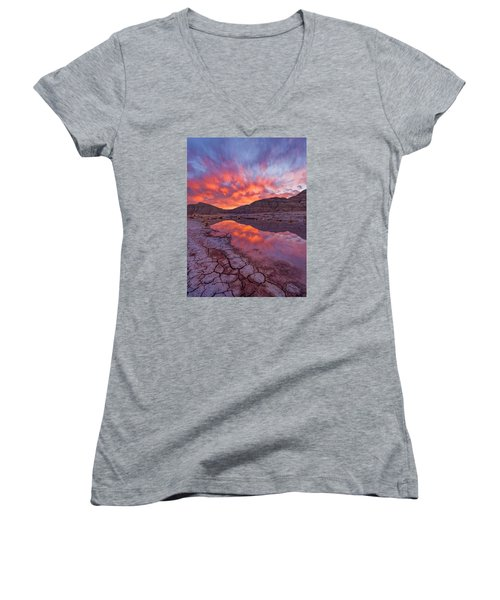 Earth Scales Women's V-Neck