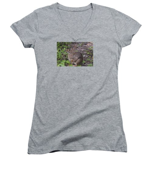 Women's V-Neck T-Shirt (Junior Cut) featuring the photograph Eastern Cottontail 20120624_11a by Tina Hopkins