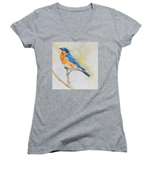 Eastern Mountain Bluebird Women's V-Neck T-Shirt (Junior Cut) by Robert Decker