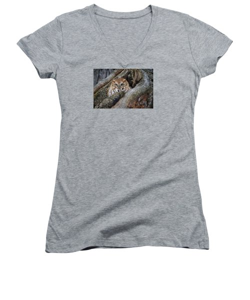 Eastern Screech Owl 2 Women's V-Neck T-Shirt