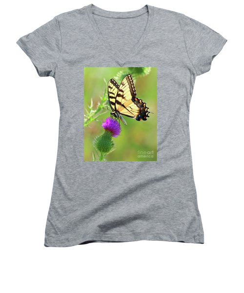 Eastern Tiger Swallowtail Women's V-Neck T-Shirt