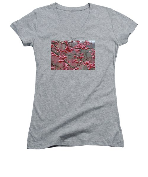 Eastern Wahoo Women's V-Neck T-Shirt