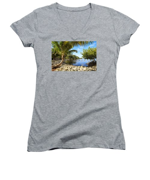 Edisons Back Yard Women's V-Neck T-Shirt