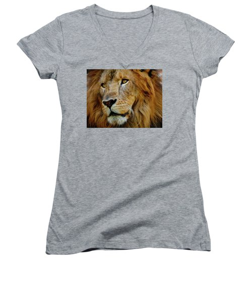 Women's V-Neck T-Shirt (Junior Cut) featuring the photograph El Rey by Skip Hunt