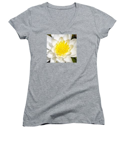 Elegant Lotus Women's V-Neck (Athletic Fit)
