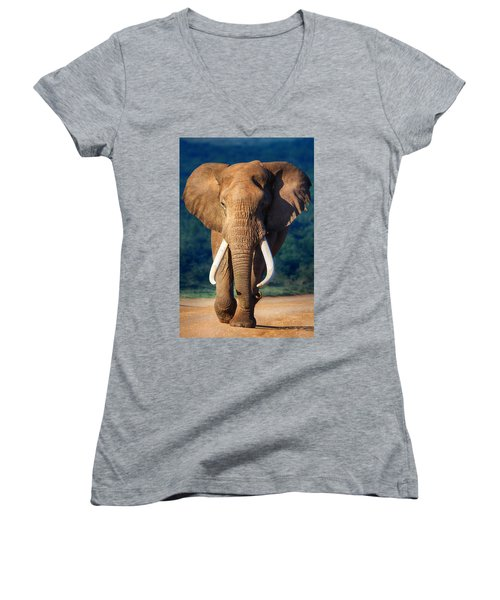 Elephant Approaching Women's V-Neck T-Shirt