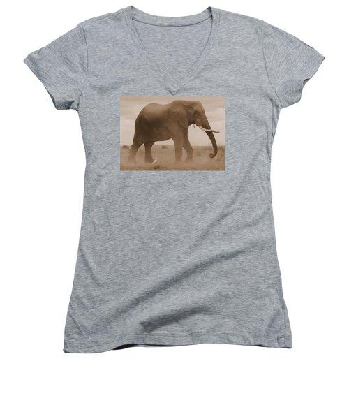 Elephant Dust Women's V-Neck T-Shirt