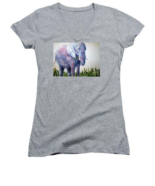 Elephant Sanctuary Women's V-Neck