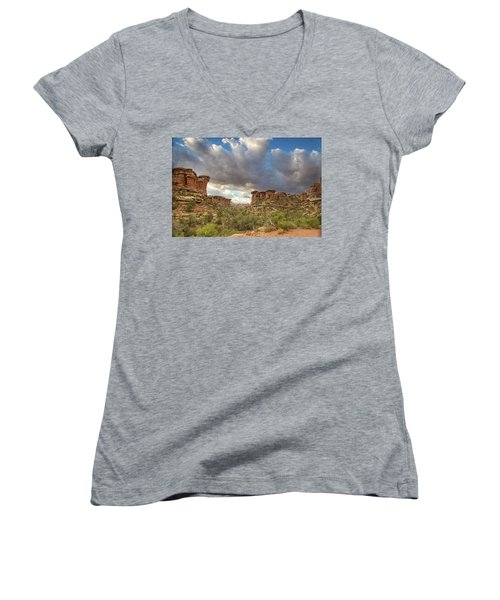 Elephant Sunrise Women's V-Neck (Athletic Fit)