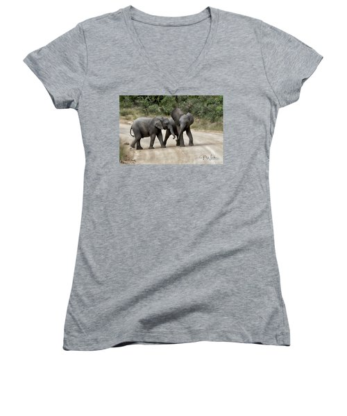 Elephants Childs Play Women's V-Neck T-Shirt