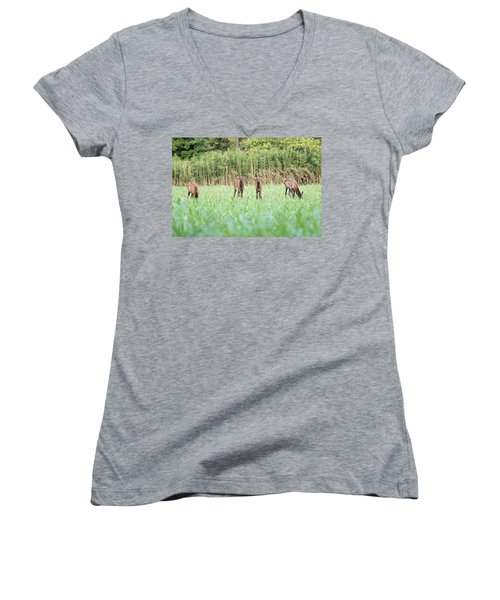 Elk Calves Women's V-Neck