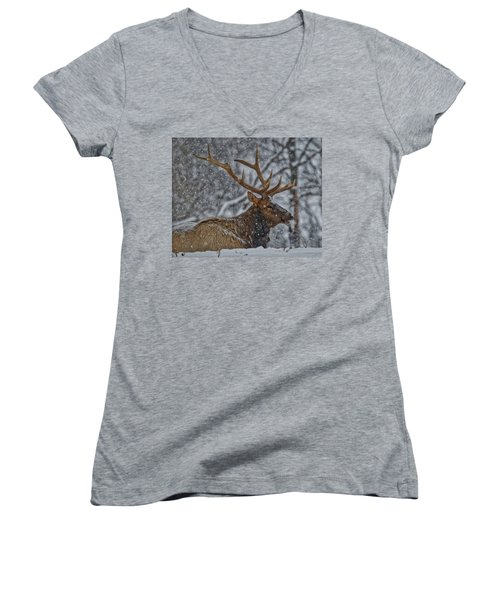 Elk Enjoying The Snow Women's V-Neck T-Shirt