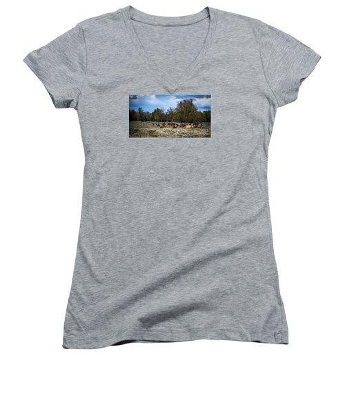 Elk Family Women's V-Neck T-Shirt