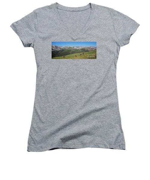 Elk Grazing In Rmnp Women's V-Neck T-Shirt (Junior Cut) by John Roberts