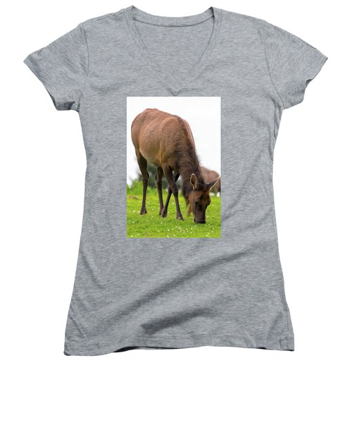Elk Grazing On Green Pasture Closeup Women's V-Neck (Athletic Fit)